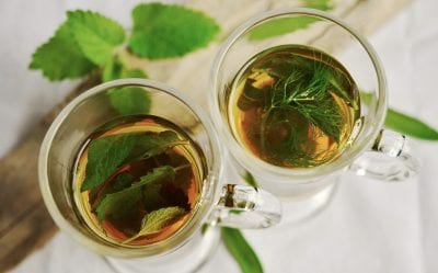 Green tea herb