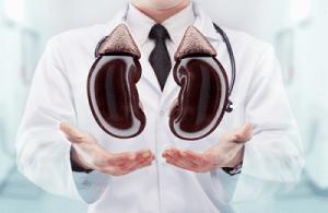 Healthy Kidneys