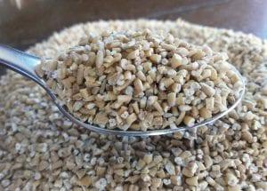 Steel cut oats whole grains