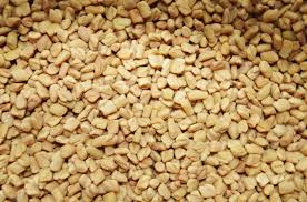Fenugreek seeds for diabetes