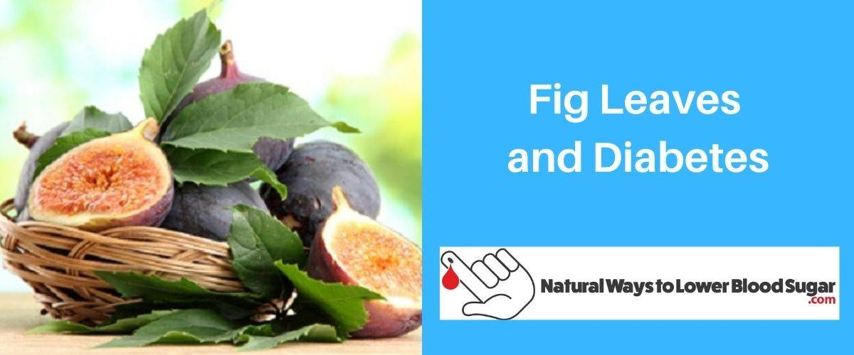 Fig Leaves and Diabetes