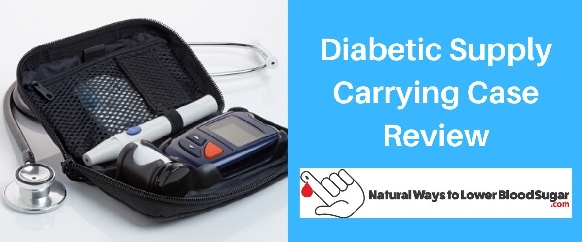 Diabetic Supply Carrying Case Review