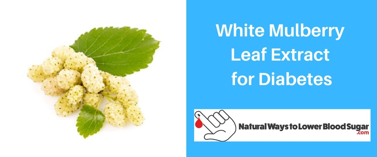 White Mulberry Leaf Extract for Diabetes