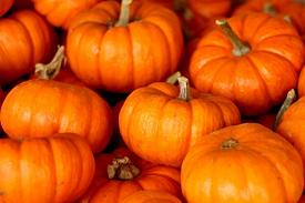 Pumpkins Stacked