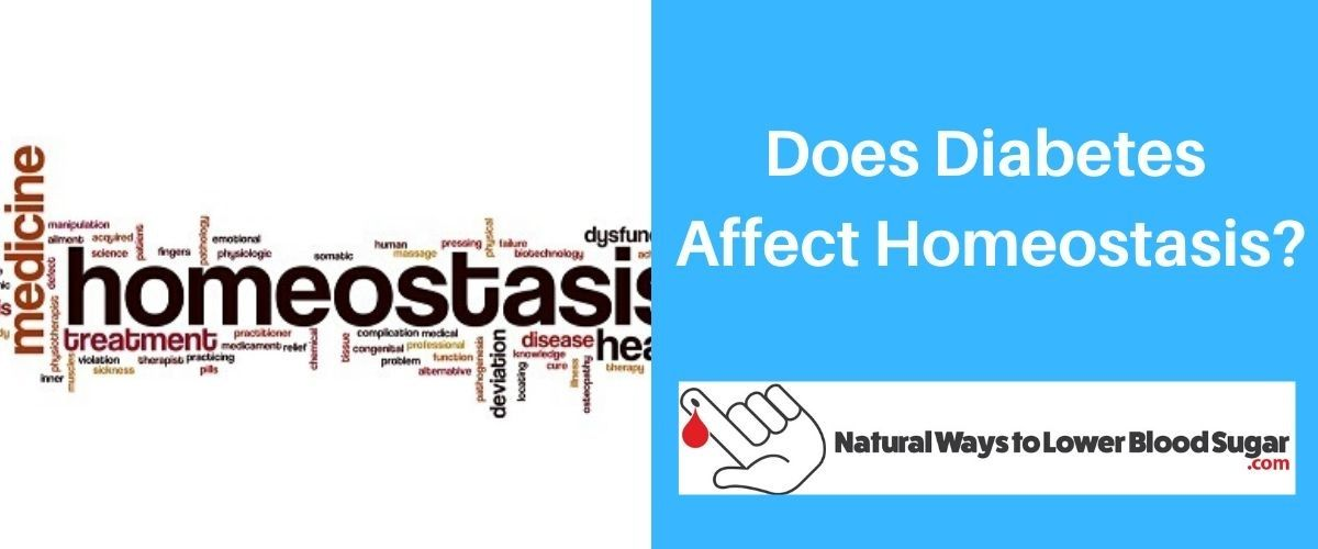 Does Diabetes Affect Homeostasis
