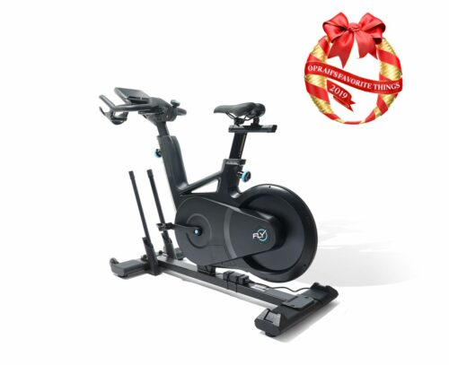 Flywheel Home Exercise Bike