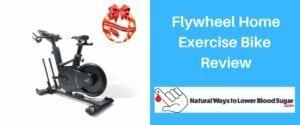 Flywheel Home Exercise Bike Review
