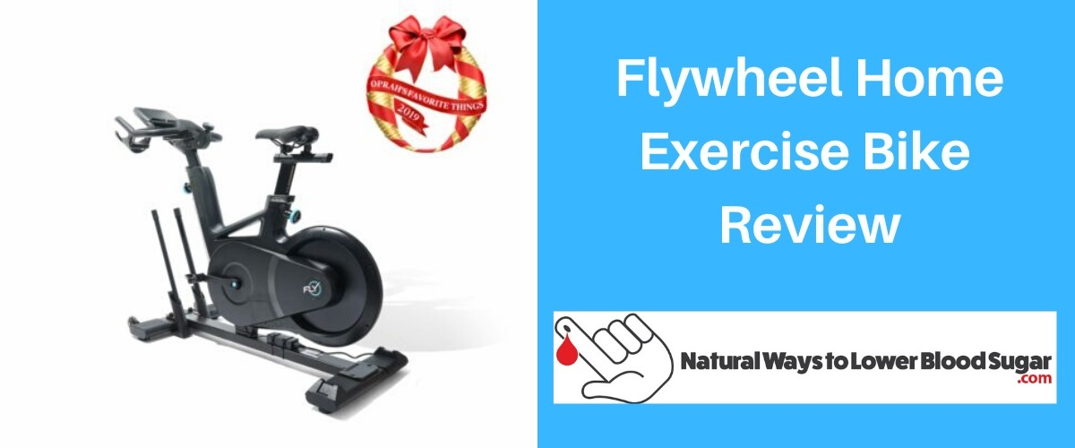 Flywheel Home Exercise Bike Review